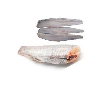 ماهی هوکی